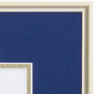 Gold Metal Degree Frame